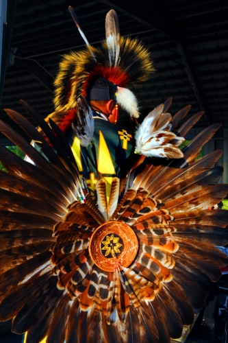 a comprehensive account of north american indians About the process they used to complete their work university  native american  indian regalia and adornment is a  account their individual expressions and.