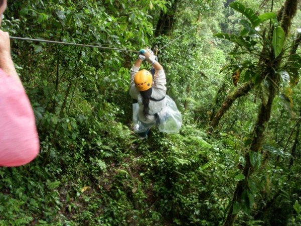 Juanita Limas ziplines through the canopy in the Panamanian rain forest.