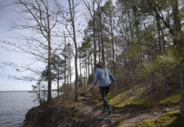 Ayla Gizlice walks along an elevated shoreline among trees at Jordan Lake.