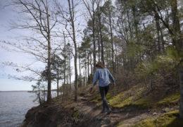 Ayla Gizlice walks along an elevated shoreline among trees at Jordan Lake.