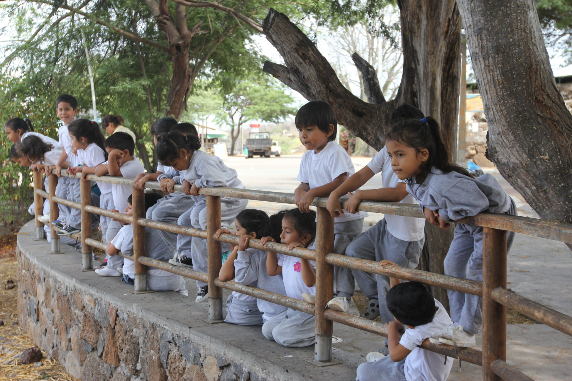 young children perch on a fence overlooking the main port on the island of San Cristobal.