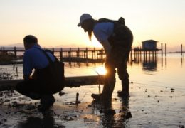 "Niels Lindquist and local fisherman David ""Clammerhead"" Cessna check out the North Carolina coast new a pier, while the sun rises behind them. Click image to start video."