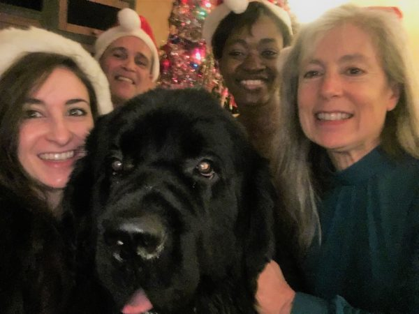 a young girl, her dad, her sister, and her mom with a black Newfoundland