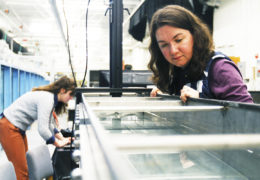 Kaylyn Gootman observes the water in the racetrack flume, as her undergraduate research assistant Savannah Swinea sets the Acoustic Doppler Velocimeter (ADV).