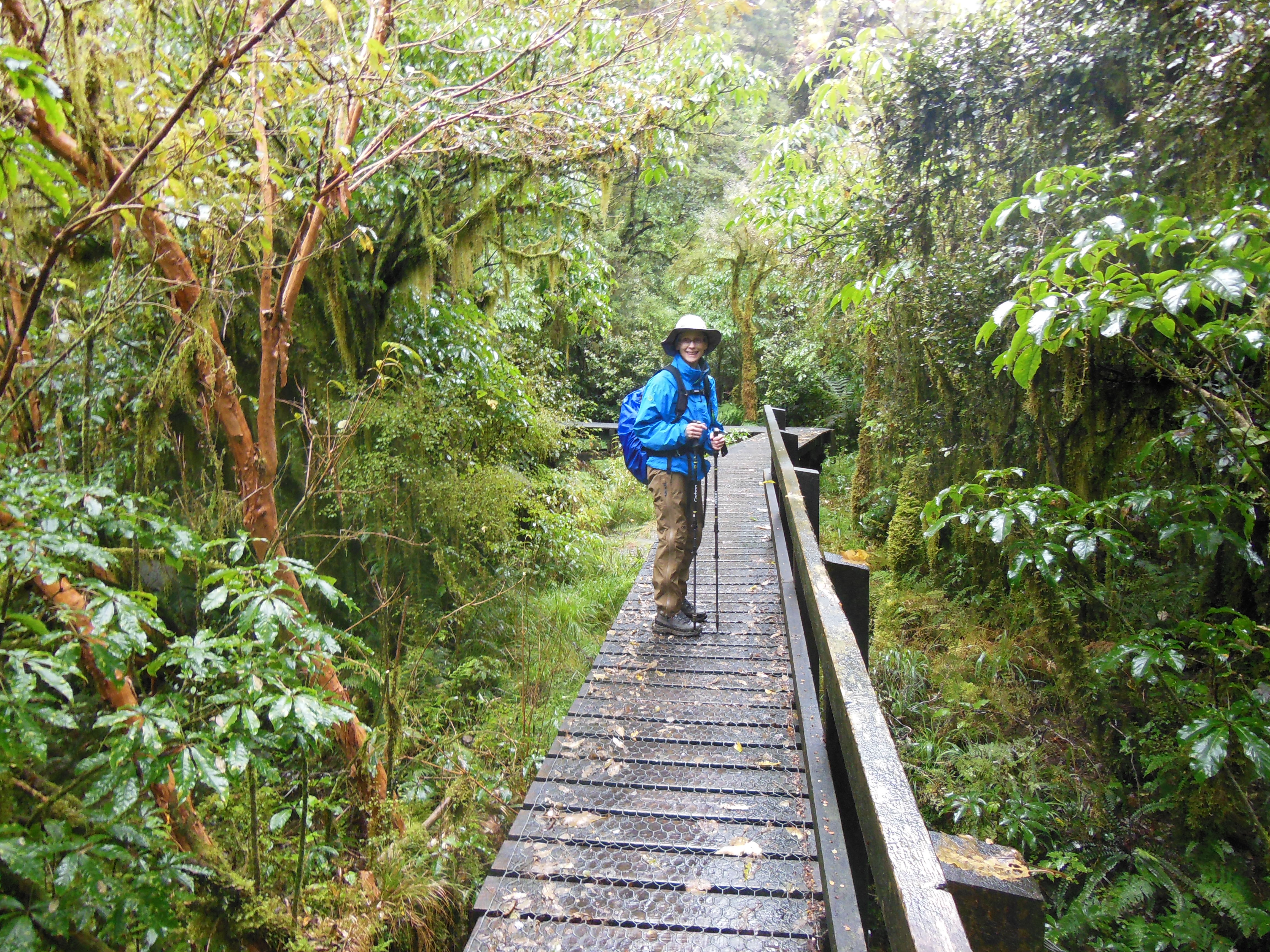 Photo courtesy of Nancy Allbritton This past year, Allbritton traveled to New Zealand and hiked the Milford Track — a widely known tramping route located amidst mountains and temperate rain forest in Fiordland National Park in the southwest of the South Island.