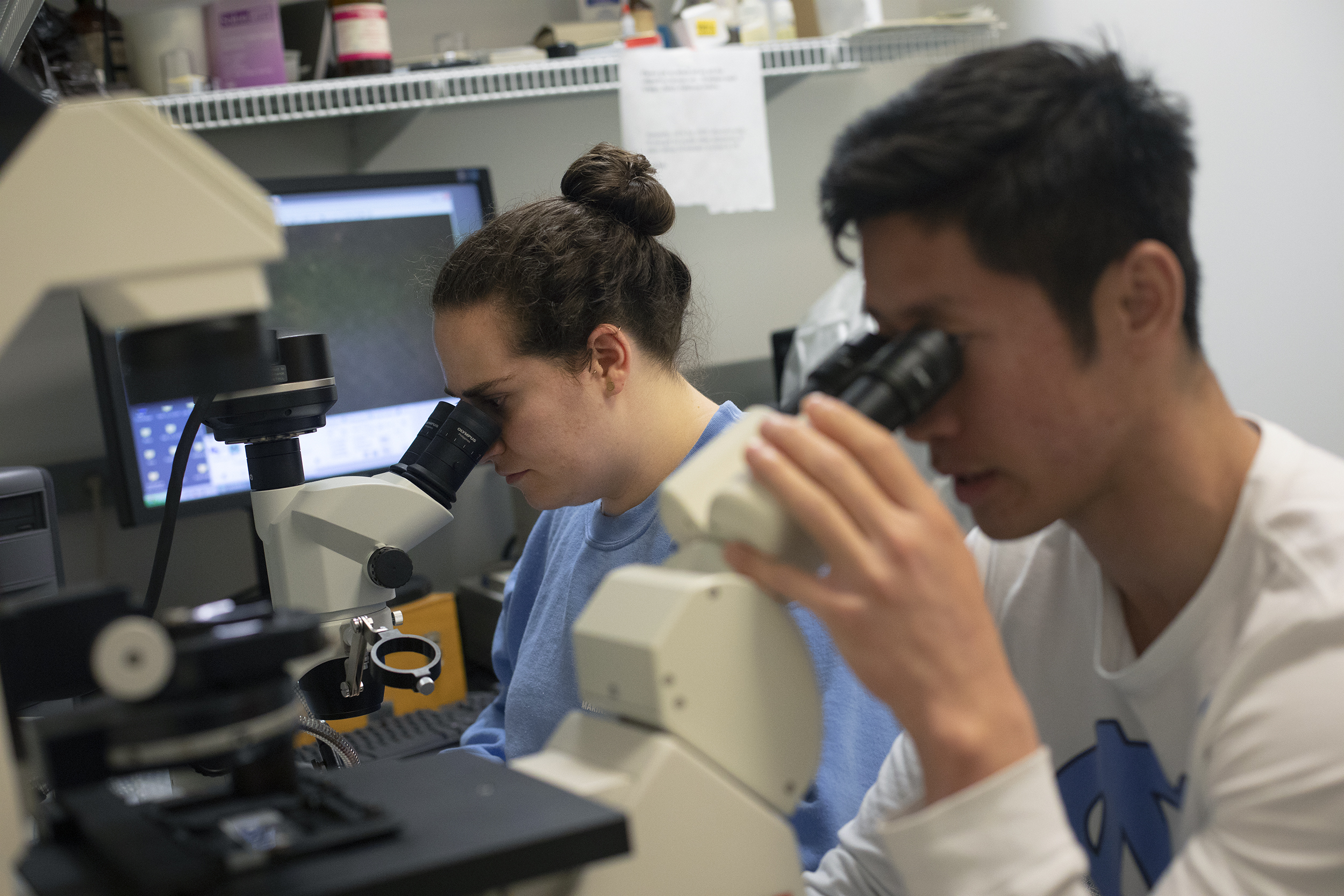 Two students look under microscopes.