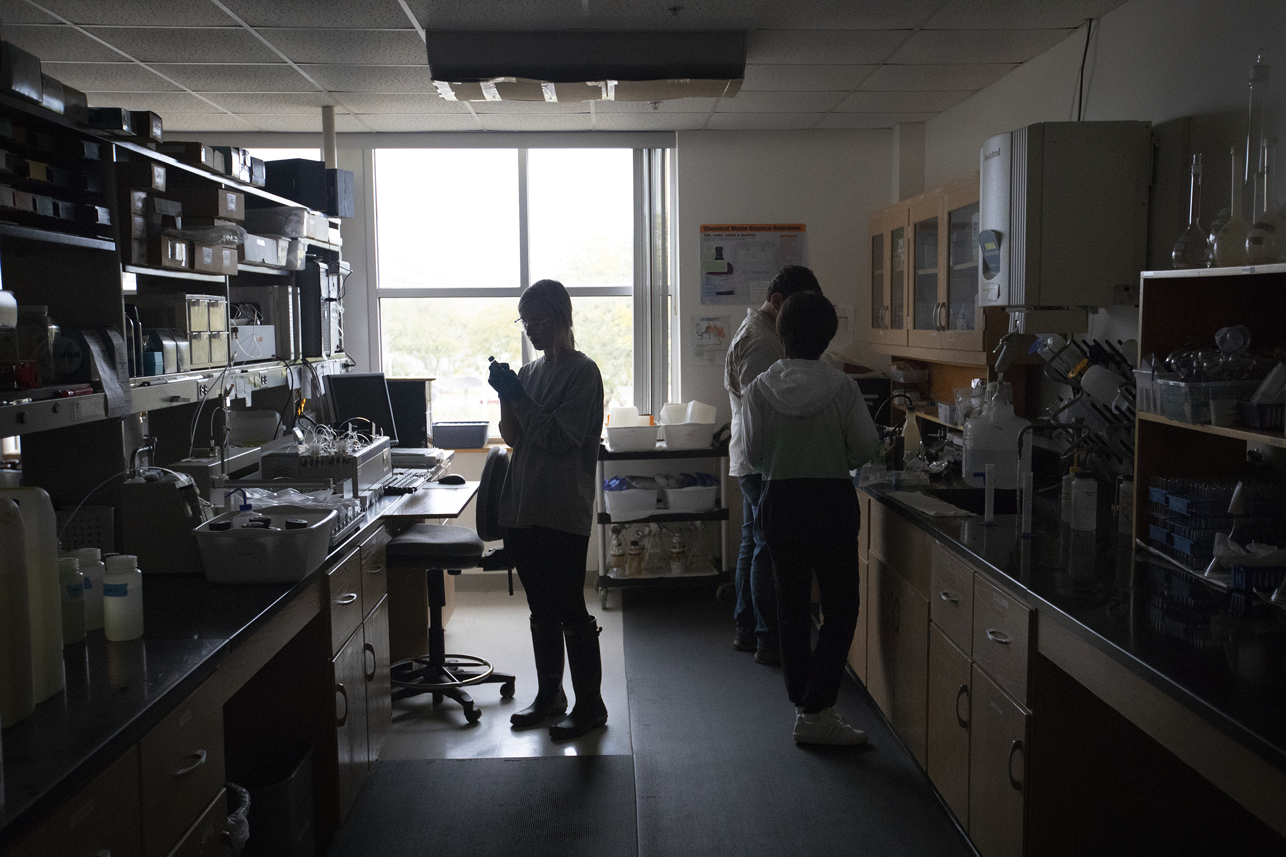 Students working in a laboratory are silhouetted by large windows as they work.