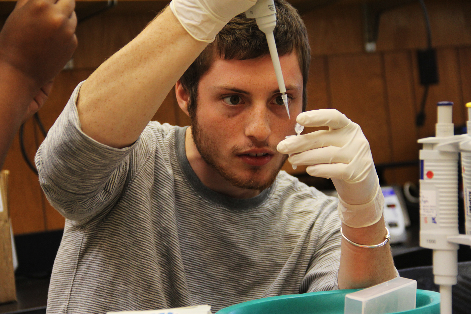 a male student concentrates on pipetting into a small test tube