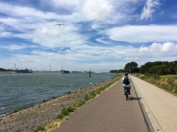 a woman bikes along a river toward windmills in the distance