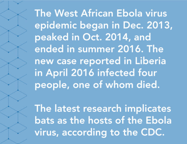 The West African Ebola virus epidemic began in December 2013, peaked in October 2014, and ended in summer 2016. The new case reported in Liberia in April 2016 infected four people, one of whom died. The latest research implicates bats as the hosts of the Ebola virus, according to the CDC.