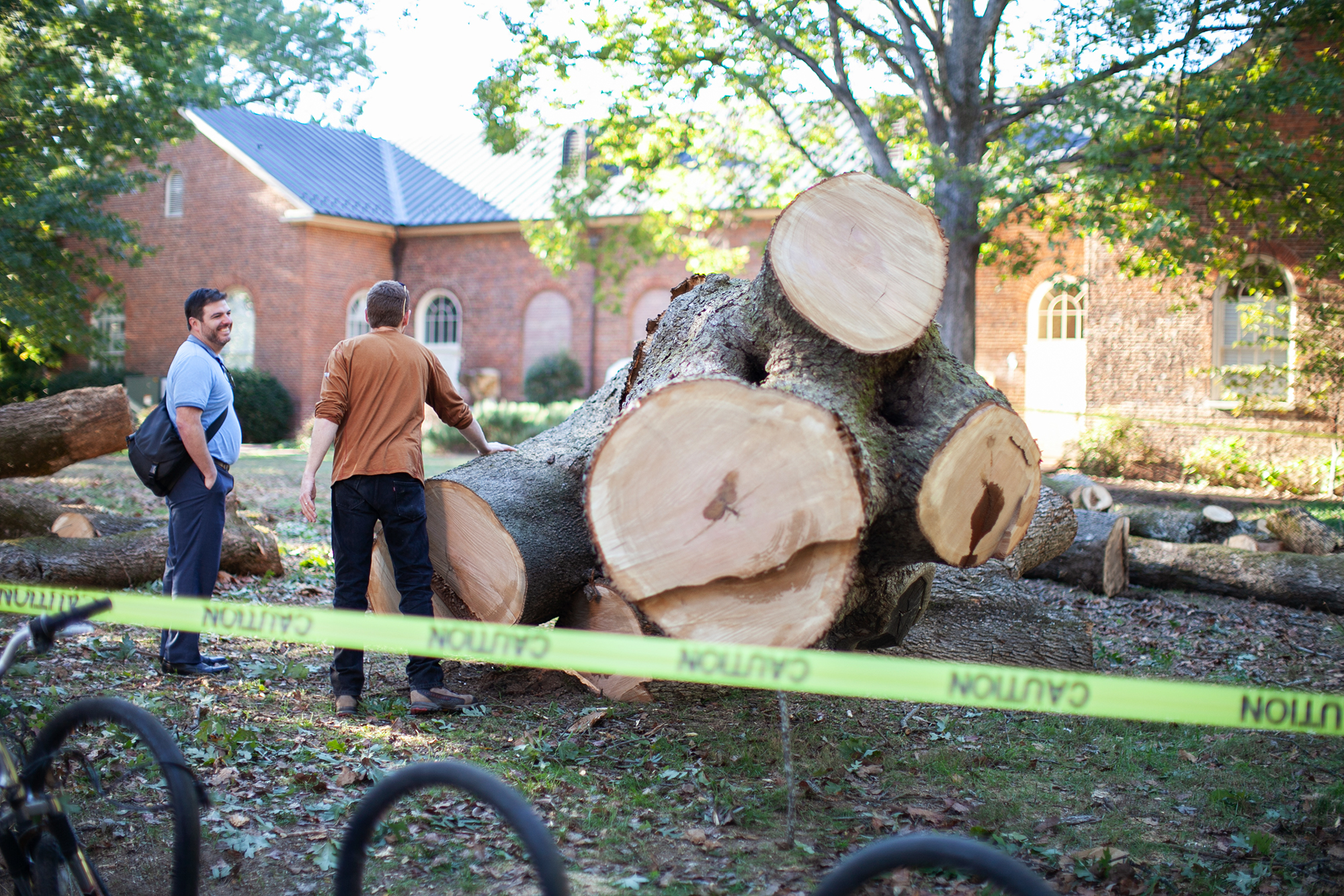 Todd BenDor and Michael Everhart inspect the post oak after removal