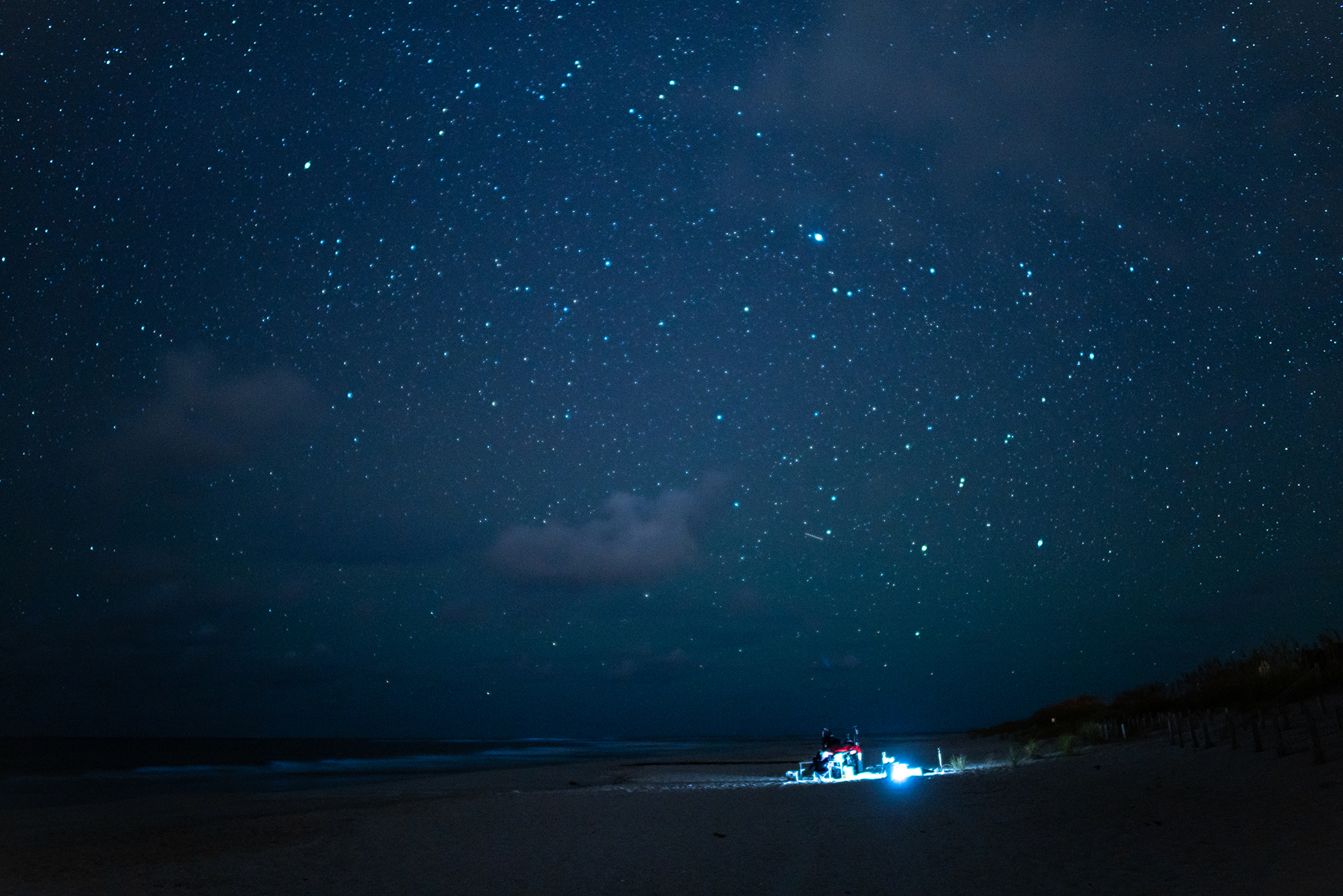 a wide shot of the research team on the beach at night