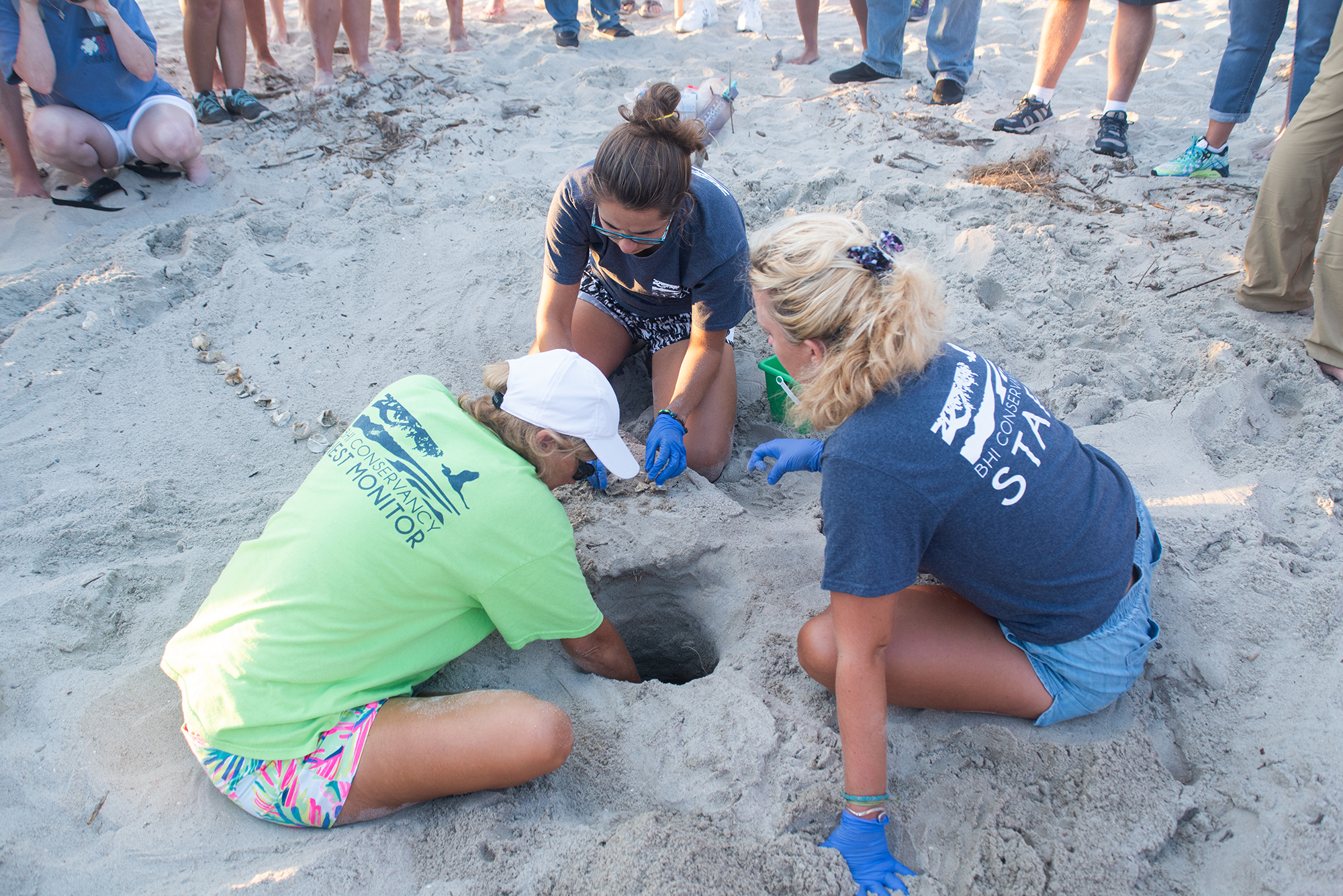 Three female Staff and interns at the Bald Head Island Conservancy (BHIC) excavate every nest on the island after it hatches