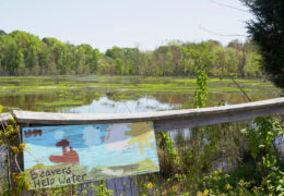 """a sign in front of a retention pond that reads: """"beavers help water"""""""