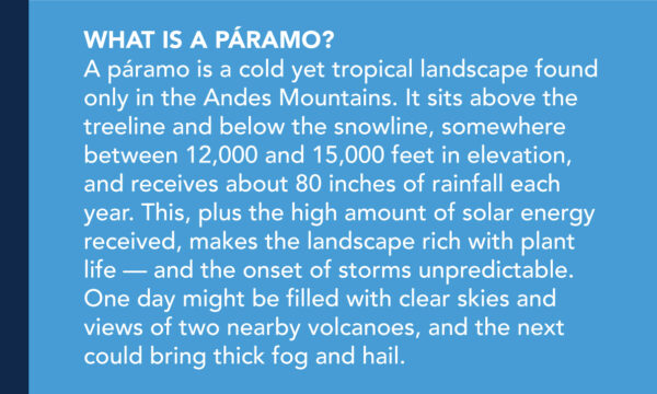 What is a páramo? A páramo is a cold yet tropical landscape found only in the Andes Mountains. It sits above the treeline and below the snowline, somewhere between 12,000 and 15,000 feet in elevation, and receives about 80 inches of rainfall each year. This, plus the high amount of solar energy received, makes the landscape rich with plant life — and the onset of storms unpredictable. One day might be filled with clear skies and views of two nearby volcanoes, and the next could bring thick fog and hail.