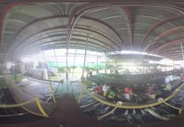 a panoramic image of banana plantation warehouse in Panema