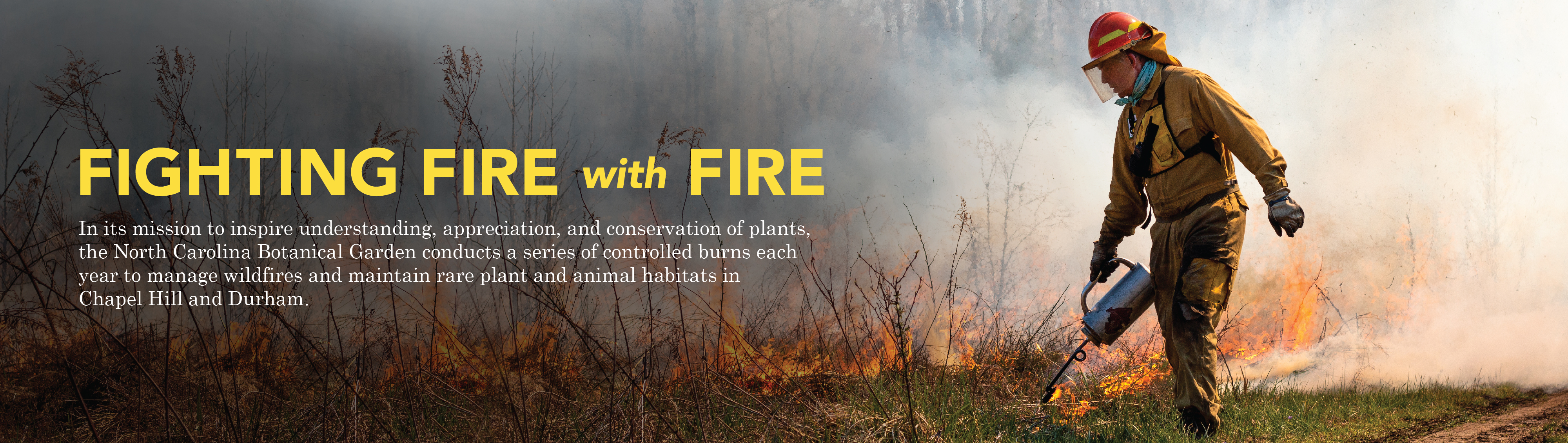 "Feature banner for: Fighting Fire with Fire. "" In its mission to inspire understanding, appreciation, and conservation of plants, the North Carolina Botanical Garden conducts a series of controlled burns each year to manage wildfires and plant and animal habitats in Chapel Hill and Durham."" Click to read more."