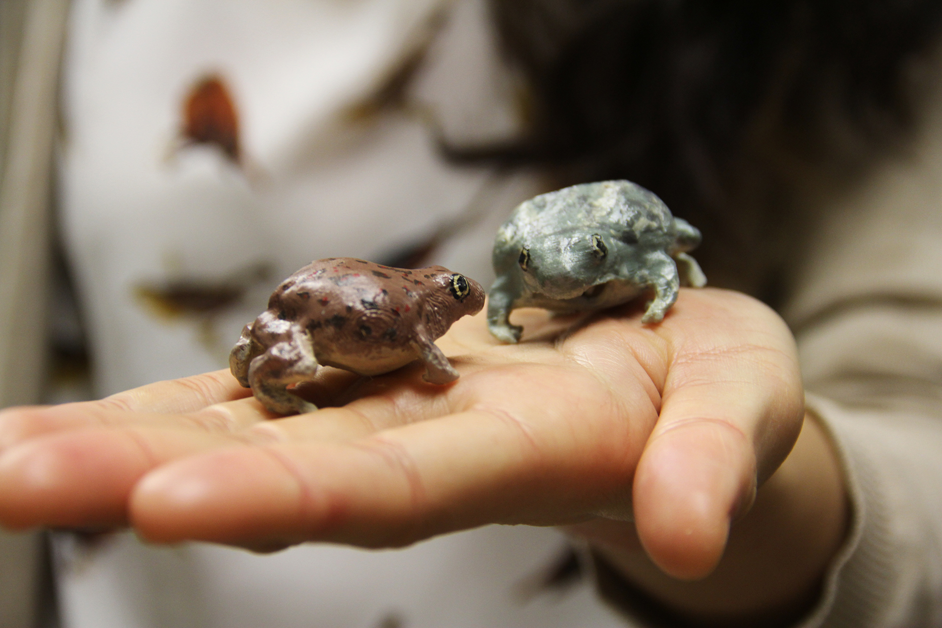 two 3-D printed spadefoot toads, one green and one brown-red, sit in the hand of a woman who studies them