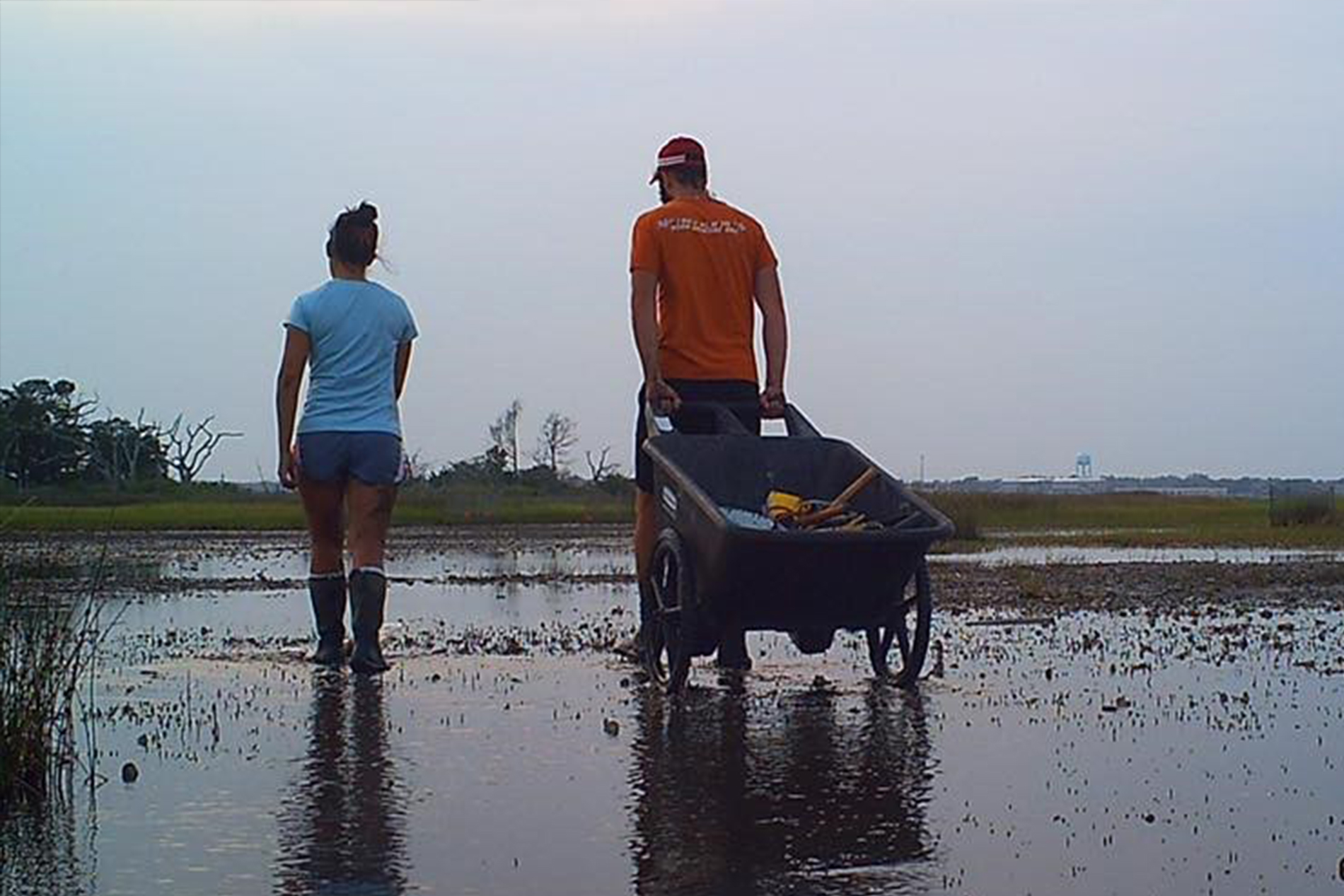 a young woman and man walk through a marsh; the man pulls a wheelbarrow full of supplies behind him
