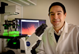 UNC pharmacy professor Shawn Hingtgen engineers a new technique to treat glioblastoma, a deadly brain tumor.