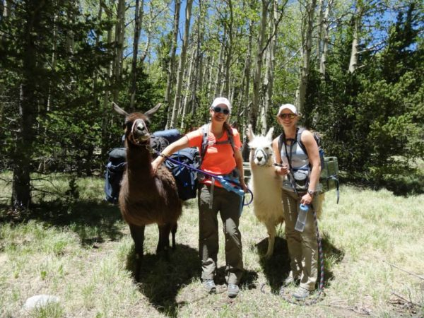 In 2014, Armstrong and one of her friends adventured on a llama trek across New Mexico's Sangre de Cristo Mountains.