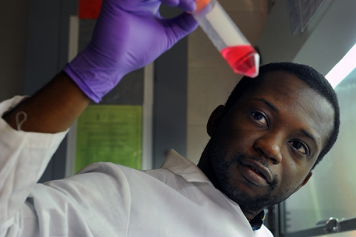 Photo of Moses Bility in the lab looking at a test tube.