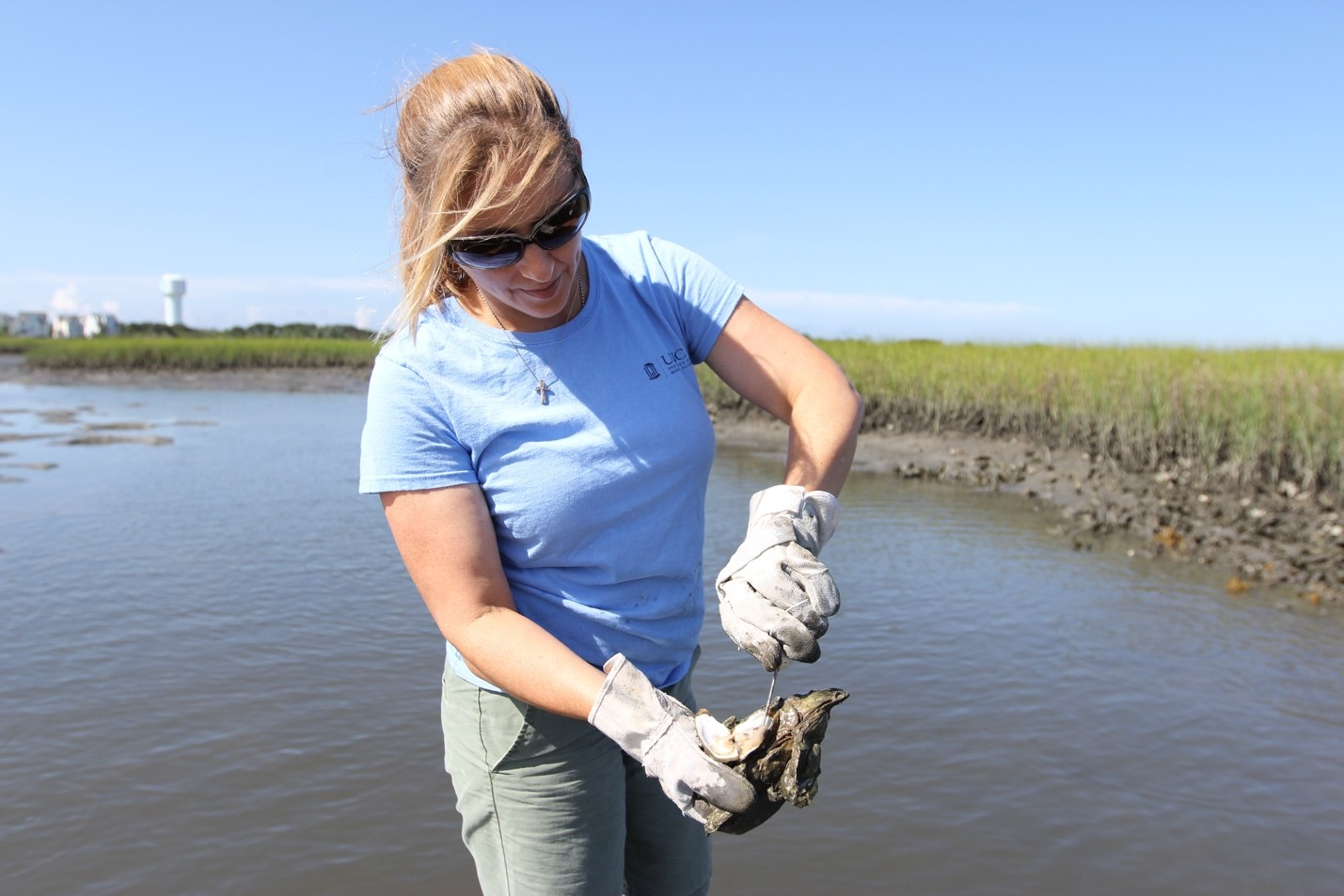 a woman removes an oyster from some sediment