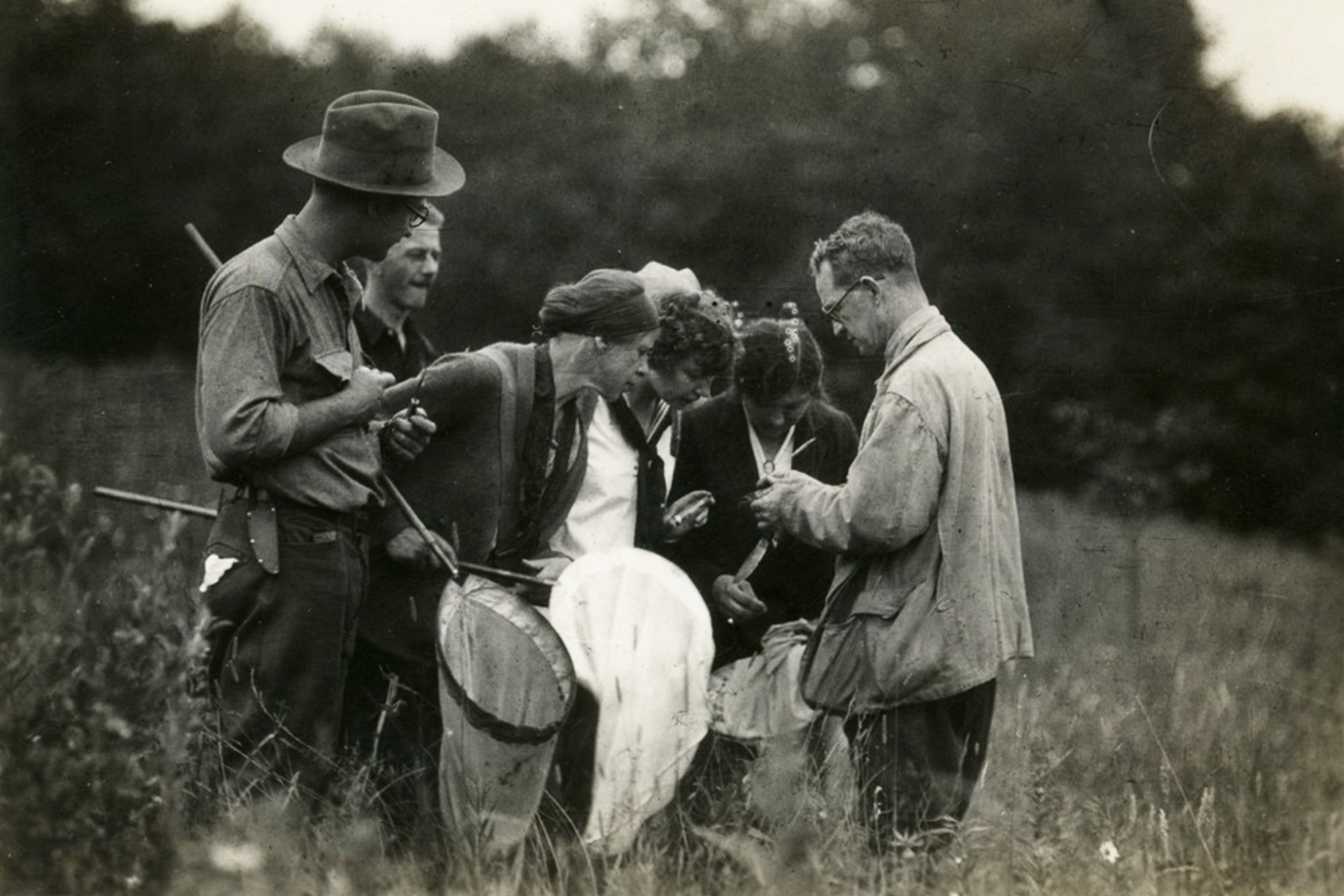 a black and white photo of a research team collecting samples with big nets in a field during the 1940s