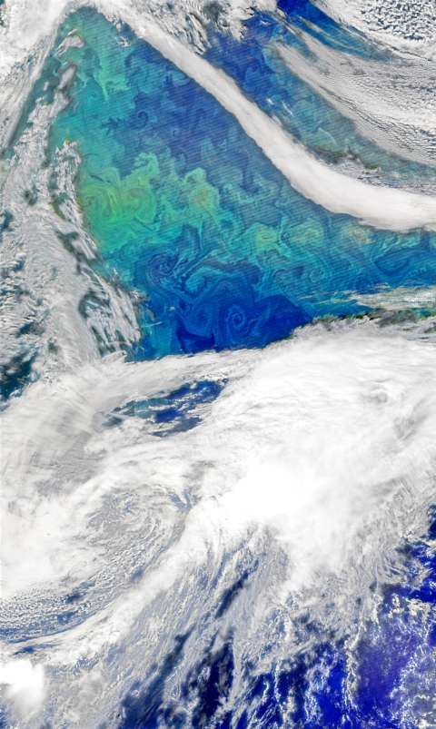 NASA image by Norman Kuring, using VIIRS data from the Suomi National Polar-orbiting Partnership NASA has unveiled a satellite photo showing a phytoplankton bloom in the North Atlantic, taken in late September.