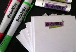 Photo of BrdzNBz promotional items, two pens, two tubes of chapstick, and sticky notes, all with the Birds and Bees slogan.