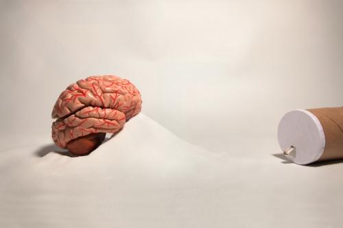 salt-brain