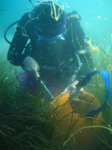 scuba diver carves pumpkin underwater
